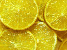 citrom, szülők háza magazin