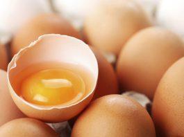 tojás, Szülők Háza Magazin,